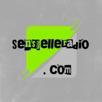 Logo of radio station Sensuelle radio