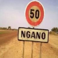Logo de la radio Radio Ngano web
