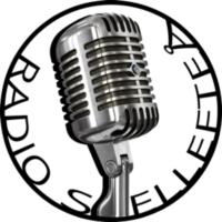 Logo of radio station Radio Skellefteå
