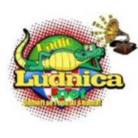 Logo of radio station RaDiO LuDNiCA