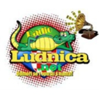 Logo of radio station RaDiO LuDNiCA
