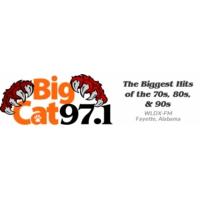 Logo of radio station WLDX Big Cat 97.1FM