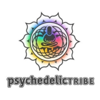 Logo of radio station Digital Impulse Psychedelic Tribe