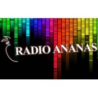 Logo de la radio Radio Ananas