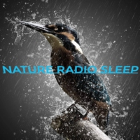Logo of radio station NATURE RADIO SLEEP