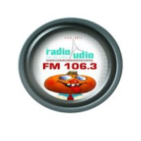 Logo of radio station Radio Audio 106.3