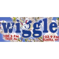 Logo of radio station WHGL