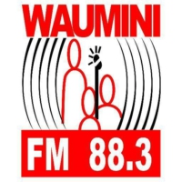 Logo of radio station Radio Waumini
