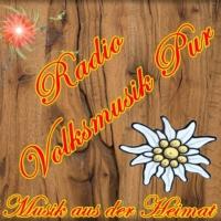 Logo de la radio Volksmusik Pur