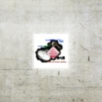 Logo de la radio Radio L'Olgiata