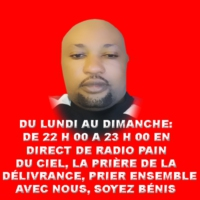 Logo of radio station RADIO  PAIN DU CIEL EN DIRECT