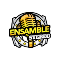 Logo of radio station Ensamble Stereo