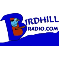 Logo of radio station Birdhill Radio