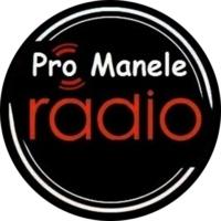 Logo de la radio Radio Pro Manele