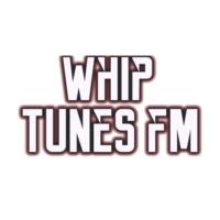 Logo of radio station Whip Tunes FM