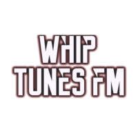 Logo of radio station Whip Tunes FM