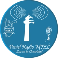 Logo of radio station Paniel Radio Miel