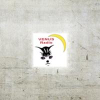 Logo of radio station Venus Radio