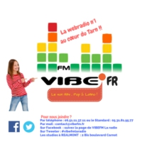 Logo of radio station VIBEFM La webradio