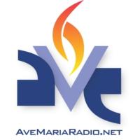 Logo of radio station WDEO Ave Maria Radio
