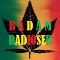 Logo of radio station BADAM RADIOSEB