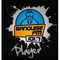 Logo de la radio Banquise FM