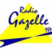 Logo of radio station Radio Gazelle