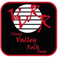 Logo de la radio Vinyl-Valley Rock Radio