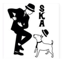 Logo of radio station SKA Curious