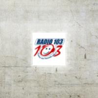 Logo of radio station Radio 103 Piemonte FM