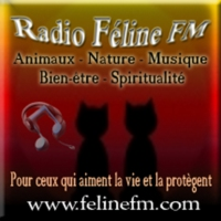 Logo of radio station Radio Feline