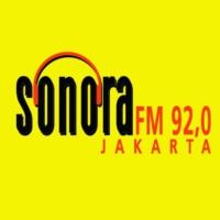 Logo of radio station Sonora FM 92.0