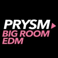 Logo of radio station Prysm EDM Big Room