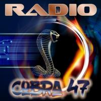 Logo of radio station Radio-Cobra47