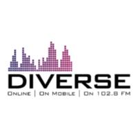 Logo of radio station Diverse FM