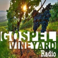 Logo de la radio Gospel Vineyard Radio