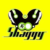 Logo de la radio Dj Shaggy Venezuela