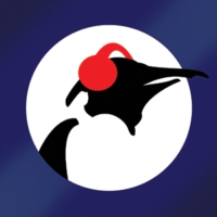 Logo de la radio Pinguin Blues