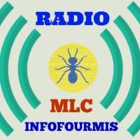 Logo de la radio MLC RADIO  INFOFOURMIS