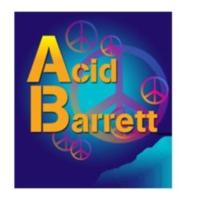 Logo of radio station acidbarrett