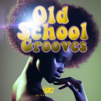 Logo of radio station oldskoolgrooves