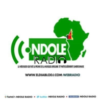 Logo of radio station Ndole Radio