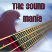 Logo de la radio Laut fm Sound Mania