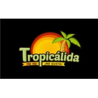 Logo of radio station Radio Tropicalida 91.3