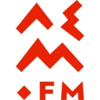 Logo of radio station lem.fm