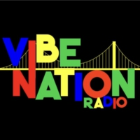 Logo of radio station Vibe Nation