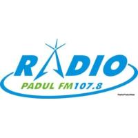 Logo de la radio Radio Padul
