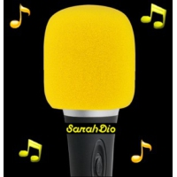 Logo of radio station SarahDio