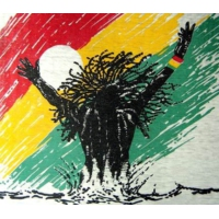 Logo of radio station Natural Trip Reggae