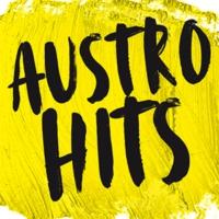 Logo de la radio Life Radio - Austro Hits